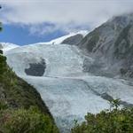 franz joseph glacier (95).JPG