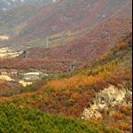 關門山 2008