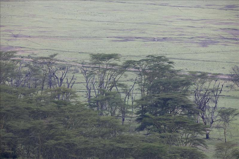View from the top at Masai Mara