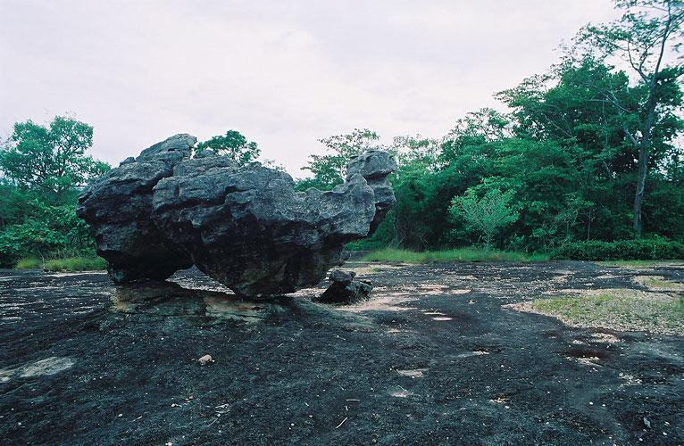 """Camel Stone"" Phuphathoep National Park"