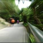 Pokfulam Reservoir Road 薄扶林水塘道