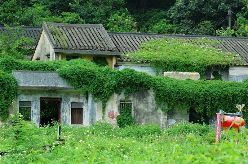沙羅洞張屋 Sha Lo Tung Cheung Uk