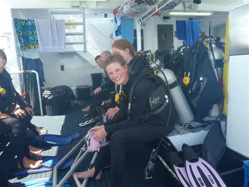 Pro Dive - f�rste dyk