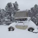 Arizona: Schnee und Kakteen!?