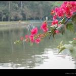 天河公园DSC_0142.jpg