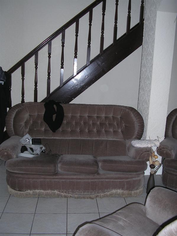 Sofa a.k.a. Smells-Like-Wet-Dog-Sofa.