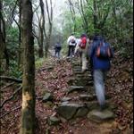 DSCN1111 上坡山徑.jpg