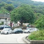 南邊圍 Nam Pin Wai