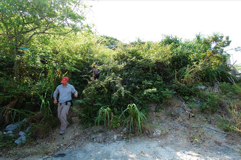 富豪海灣對面的護土牆落馬路