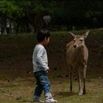 Nara016.JPG