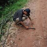 Making our walking sticks...