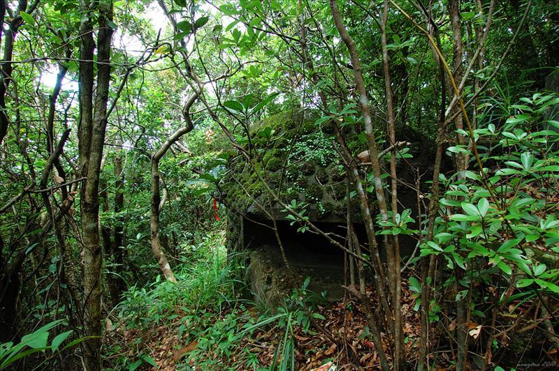 南脊上奇力山途中經過機槍堡遺址