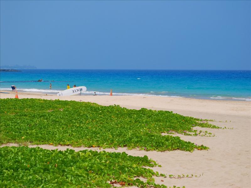 Kona - Hapuna Beach