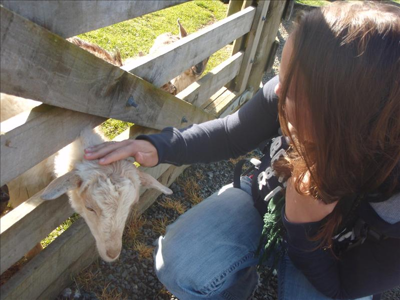 Jenn overcame her old fear of goats at SheepWorld - I was so proud! :D