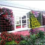 98南投花卉博覽館