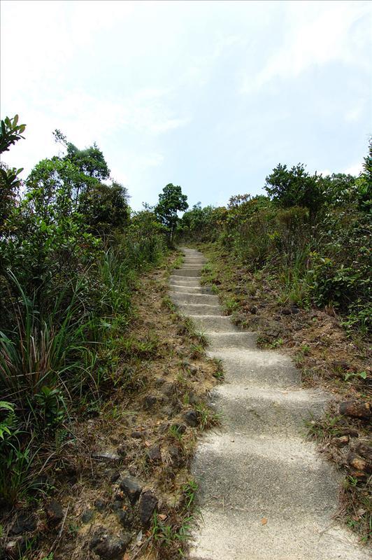 接百步梯上鹿湖高原