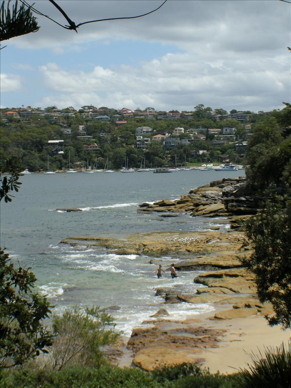 Beginning of the 10km Manly Scenic Walkway track