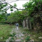 轉右入下苗田廢屋旁小路 Ha Miu Tin Ruined village