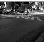 20091228-IMG_8967_1.jpg