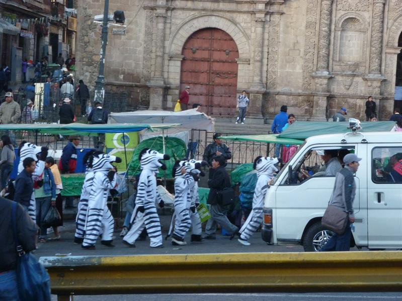 People dress as zebras and hang out at the zebra crossing - I kid you not!