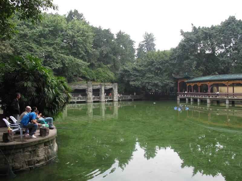 ishing-pond area in the park.