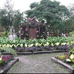 98年台北花卉展