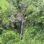 2011 Maui Day 5