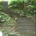 401登山步道 (1).JPG