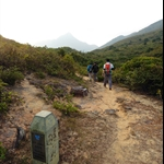 水務處為高流灣至大浪灣居民供水而建的山路