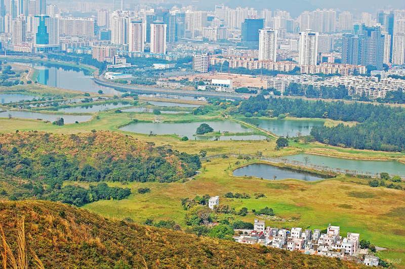 Shenzhen Metropolis