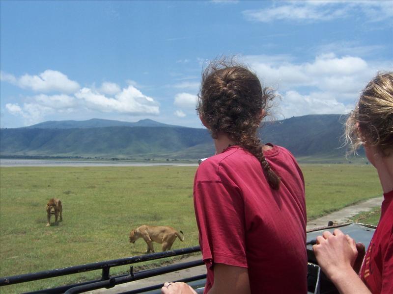 Elisa•Aline•lions•Ngorongoro