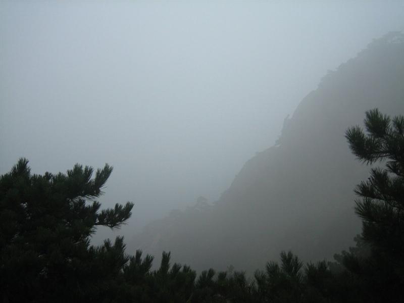 雾蒙蒙的晨景
