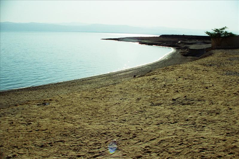 dead sea 422 metres (1,385 ft) below sea level  the lowest elevation on the Earth's surface on dry land