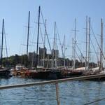 Single Sailing Trip
