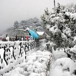 Make Way to Shimla
