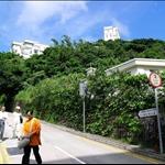 DSCN0046 柯士甸山道.jpg