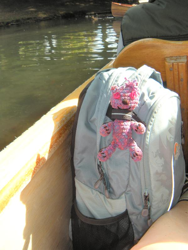 Punting on the River Avon in Christchurch with Andrea;s teddy