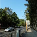 寶運路 Po Wan Road