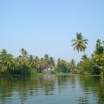 Alleppey Back Waters