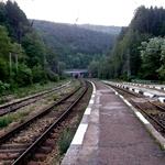 P6050016.jpg