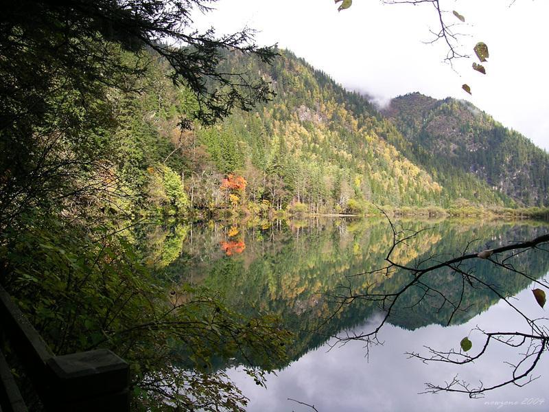 Arrow Bamboo Lake (Jiànzhú Hǎi) 箭竹海