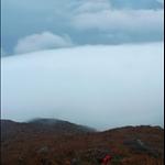 DSC_0049 坐看雲起時.jpg