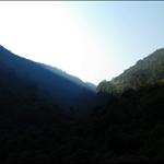 鶴藪圍車路看鶴藪水塘區