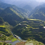 "Luzon Island , Rice terraces at Banaue- ""the eight wonder of the world"""