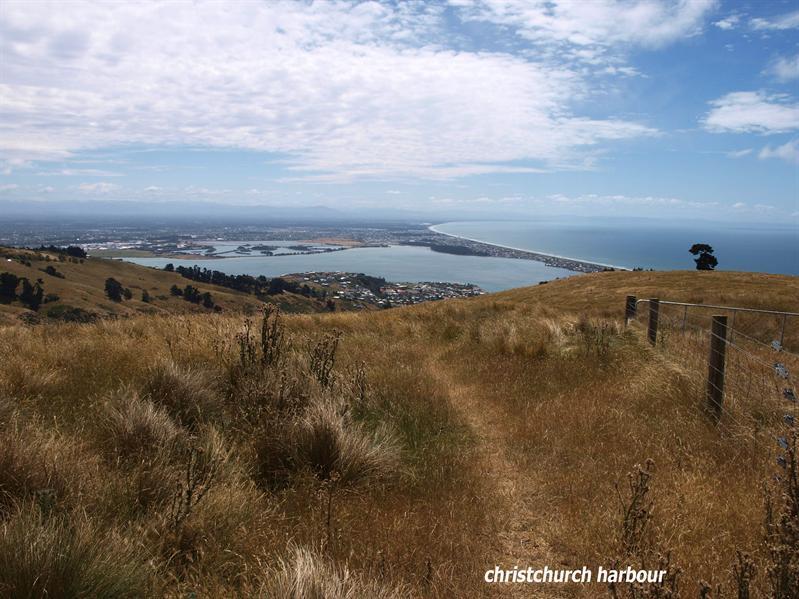 Christchurch harbour