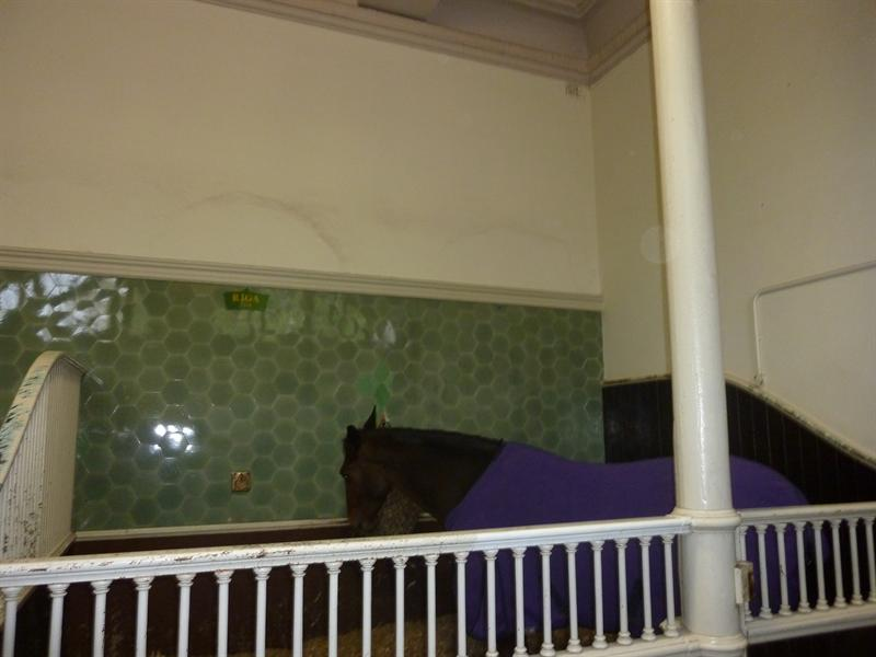 The Royal Mews, London (11.12-11.14)