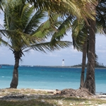 Miami y Nassau 2010