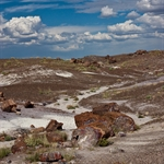 Petrified Forest National Park (Sept. 2010)