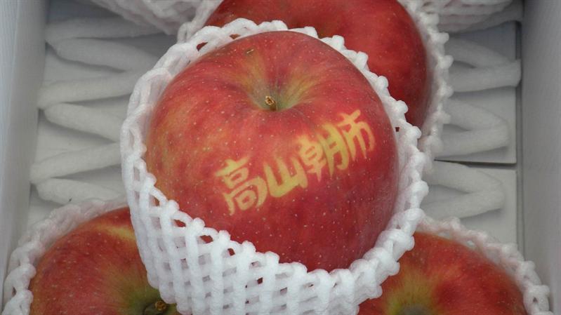 漂亮的蘋果  真是令人垂涎欲滴