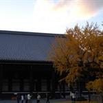 Nishihonganji09,12,6 04.jpg